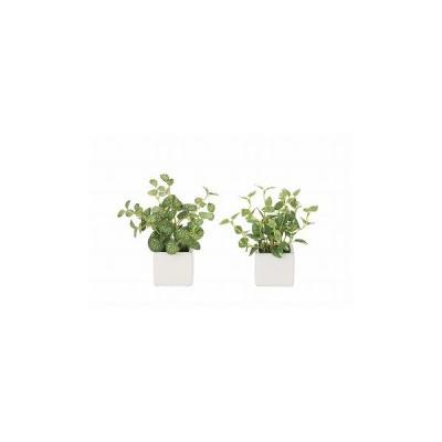 《アートグリーン》《人工観葉植物》光触媒 光の楽園 ハ−トリ−フ・ポトス2個セット