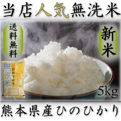 米 5kg 九州 熊本県産 ひのひかり 無洗米 令和元年産 ヒノヒカリ 送料無料 5kg1個 精白米 くまもとのお米
