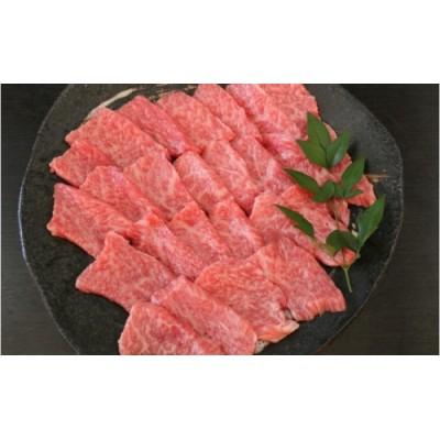 【GI】あか牛特選焼肉500g(熊本県産)