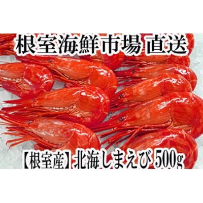 【北海道根室産】北海しまえび500g A-14120