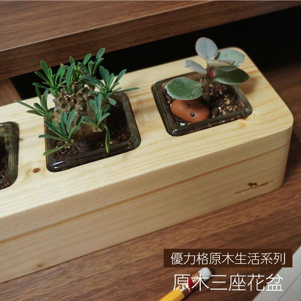 【天然原木作】原木三座花盆/辦公室植栽/多肉植物/盆栽