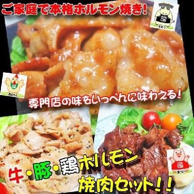 【専門店の味を一度に!】牛・豚・鶏ホルモン焼肉セット!