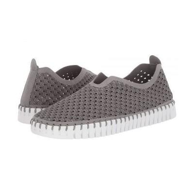 STEVEN NEW YORK スティーブンニューヨーク レディース 女性用 シューズ 靴 スニーカー 運動靴 Limber - Grey