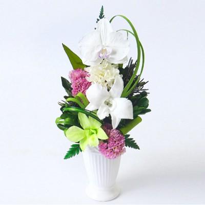 【ギフト】[ベル・フルール]颯花 <胡蝶蘭と洋蘭> フラワーギフト