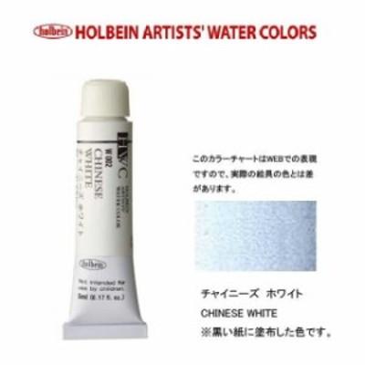 ホルベイン Holbein 透明水彩2号(5ml) W002 チャイニーズホワイト