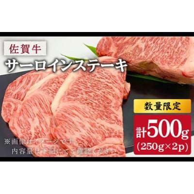 【数量限定】A4ランク以上の肉をお届け!佐賀牛サーロインステーキ 合計500g(250g×2枚)【吉野ヶ里町】[FBT002]