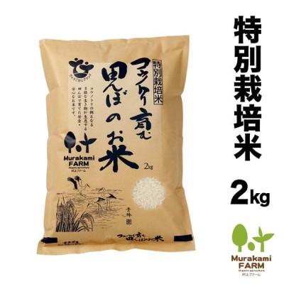 特別栽培米 コウノトリ育む田んぼのお米!2kg コシヒカリ 玄米 白米 令和2年産 特別栽培米 有機肥料 兵庫県産