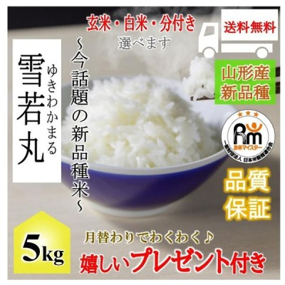 お米 5kg  山形県産 雪若丸 令和2年産 玄米5kg×1袋 選べる精米