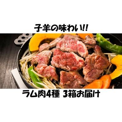 子羊の味わい ~4種のラム肉 3箱セット~