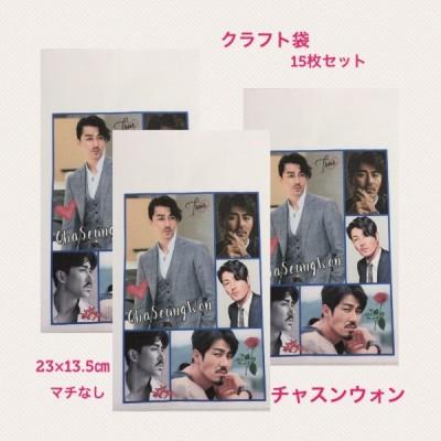 チャスンウォン チャ・スンウォン クラフト袋 封筒 紙袋 小袋 15枚セット 韓流 グッズ  pb017-3