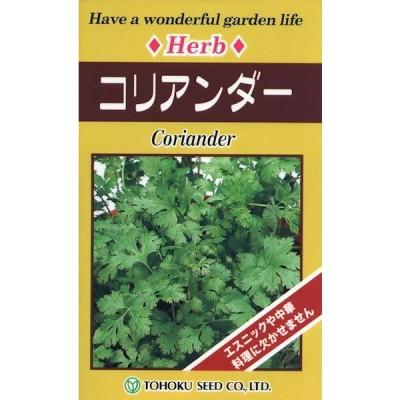 ハーブ コリアンダー 種子 たね 品番7745