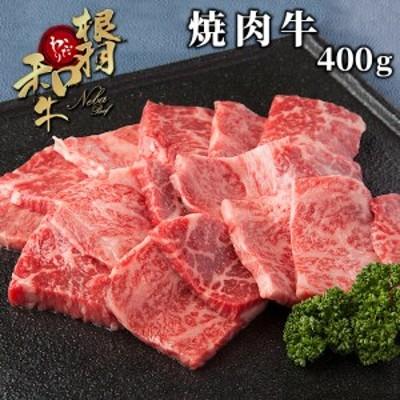 年内発送【焼肉用/盛り合わせ400g】根羽こだわり和牛 バラ肉 モモ肉 盛り合わせ 国産黒毛和牛