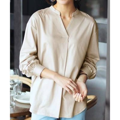 tシャツ Tシャツ IEDIT 抗菌防臭加工のシルケットカットソー素材 ブラウス気分のきれいめトップス