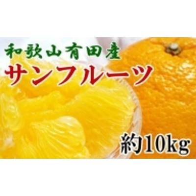 和歌山有田産サンフルーツ約10kg(M~3Lサイズおまかせ) ※2021年3月下旬~4月下旬にかけて順次発送