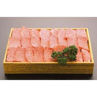 土佐黒毛和牛 カルビ焼肉用 500g