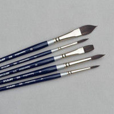 アムスAMS 筆セットアクアレリスト900 5本組 170000 1個(直送品)