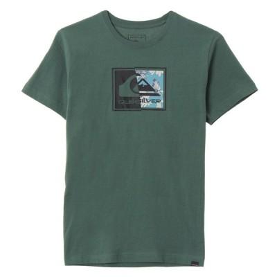アウトレット価格 セール SALE セール SALE クイックシルバー QUIKSILVER  FRACTAL LOGO ST T-shirts Me