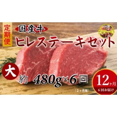 15001.国産牛ヒレステーキ6回定期便(大)