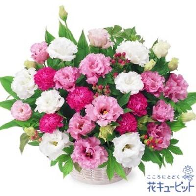 15時迄の注文で翌日届可【新築引っ越し祝い】 花キューピットの2色トルコキキョウのアレンジメント 花 ギフト 移転 記念 お祝い プレゼン