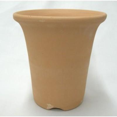 柔らかい ラッパ鉢 4号 植木鉢 鉢 蘭 らん ラン 富貴蘭 長生蘭 園芸