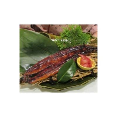 室戸市 ふるさと納税 室戸の炙り鯖寿司とうなぎの蒲焼きセット