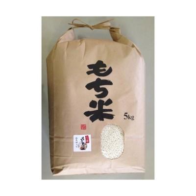 精米新米 新潟県産 白米 わたぼうし 1等 水稲もち米 5kg 令和元産 もち米