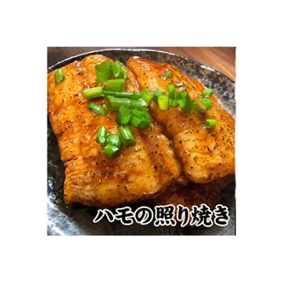 鱧の照り焼き(100g×5切れ)【冷凍】【A-44】