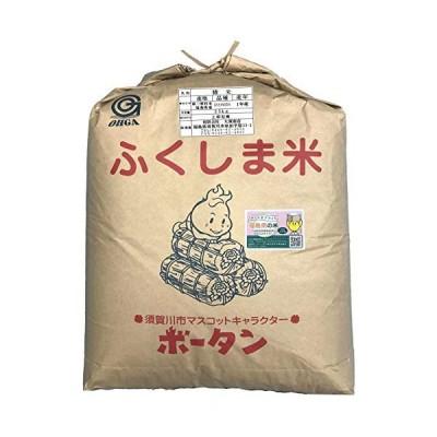 新米令和元年産福島県中通り産ひとめぼれ25kg 白米