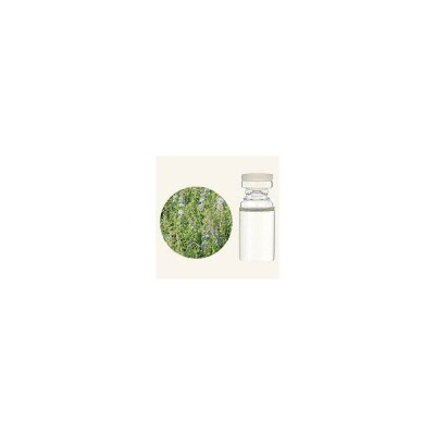 生活の木 アロマ エッセンシャルオイル 薄荷(ハッカ) 3mL 精油 アロマ