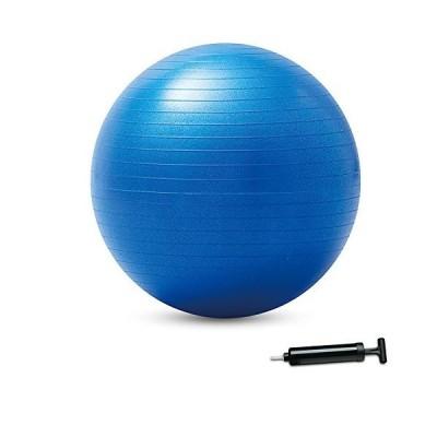 大きいバランスボール 55cm NH3031