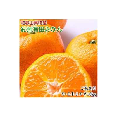 紀州有田みかん 10kg ご家庭用(S~L)サイズおまかせ 【和歌山厳選館】