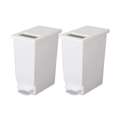 新輝合成 フタ付きゴミ箱 ユニード ゴミ箱 ペダル プッシュ ペール ホワイト 2個セット 45L