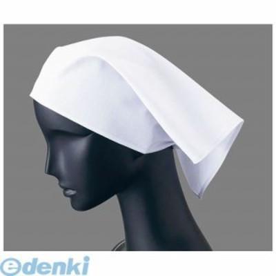 [SSV01] 三角巾25(ホワイト)2枚入 4905001556272