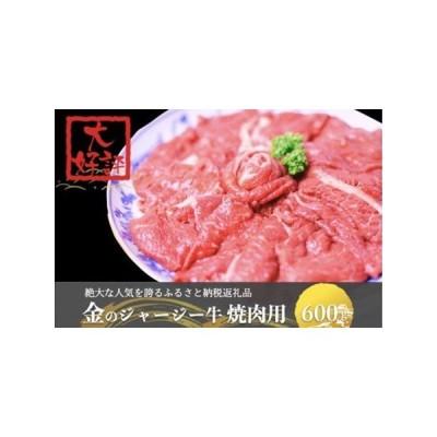 ふるさと納税 【予約受付】金のジャージー牛 焼肉用 500g 熊本県小国町