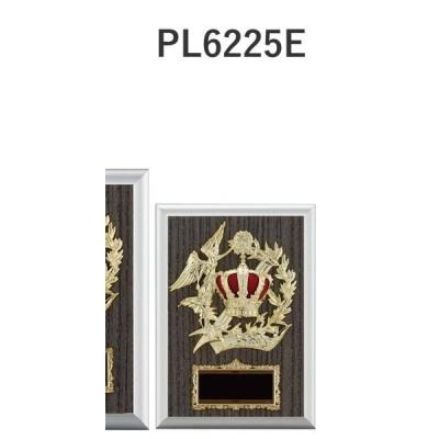 楯 PL6225E 18×12cm 文字入れ無料