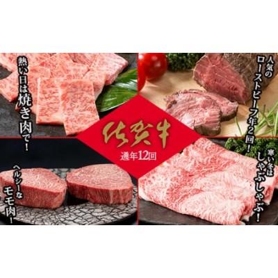 N500-8【通年12回定期便】佐賀牛季節のオススメ定期便 ファミリー向け
