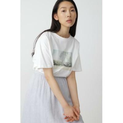 HUMAN WOMAN/ヒューマンウーマン ◆フォトプリントTシャツ ホワイト M