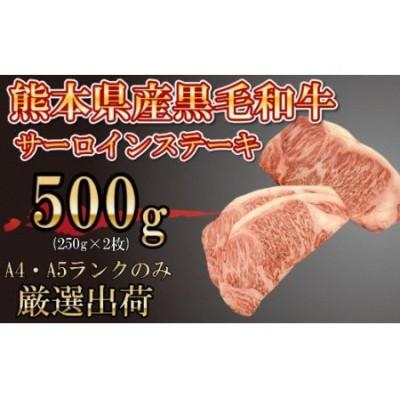 熊本県産 黒毛和牛 サーロインステーキ 250g×2P A4 A5 厳選
