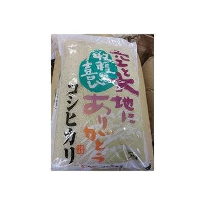 榛東村 ふるさと納税 【令和2年産米】榛東村産コシヒカリ 10kg(5kg×2袋)