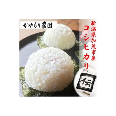 【2633-0162】新潟県産 コシヒカリ「伝」白米5kg 令和2年産