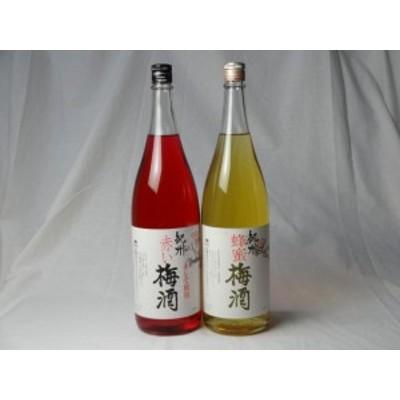 こんな梅酒福袋が欲しかったぁ 飲み比べ2本セット(中野BC 赤い梅酒 蜂蜜梅酒) 1800ml×2本
