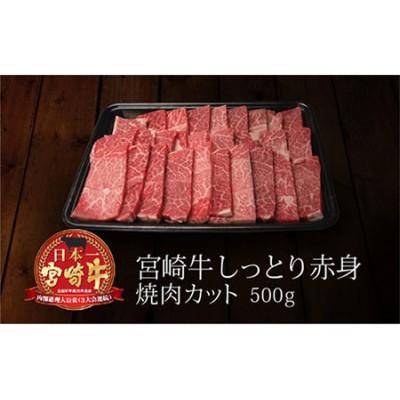 <宮崎牛>しっとり赤身焼肉 500g※90日以内出荷【B217】