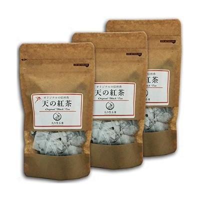 みなまた和紅茶 天の紅茶TB ティーバッグ 2g 16個×(3袋セット) 天の製茶園