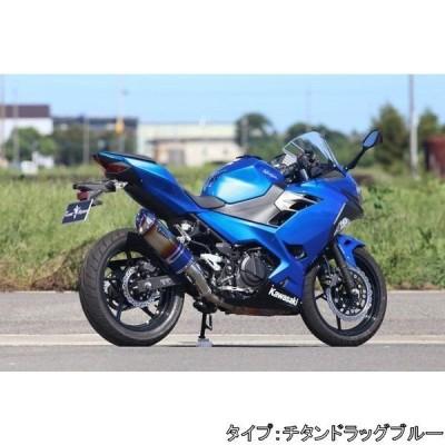 アールズギア r's gear ワイバンリアルスペック スリップオン Type S ニンジャ250 KAWASAKI カワサキ