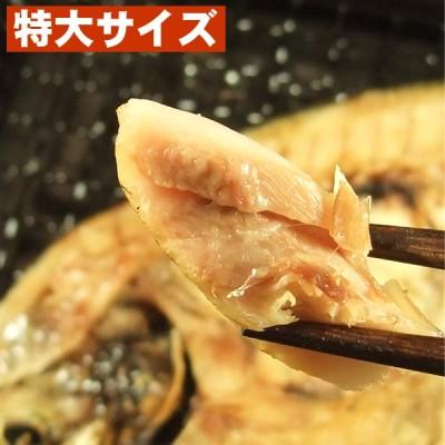 【国産】あじ一夜干し(鯵干物) 特大サイズ(2枚入)長崎県高級真鯵使用。うす塩無添加仕上げ。贈答にお薦め