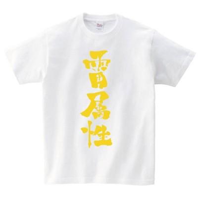 雷属性 書道家 筆文字 属性 ゴールド メタリック 半袖Tシャツ