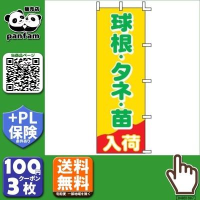 送料無料|のぼり 球根・タネ・苗 入荷 60×180cm J-20|b03