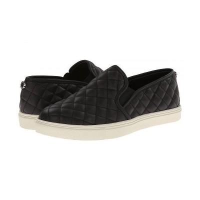 Steve Madden スティーブマデン レディース 女性用 シューズ 靴 スニーカー 運動靴 Ecentrcq Sneaker - Black
