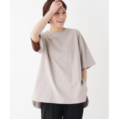 SHOO・LA・RUE / 【M-LL】テールカットロングTシャツ WOMEN トップス > Tシャツ/カットソー