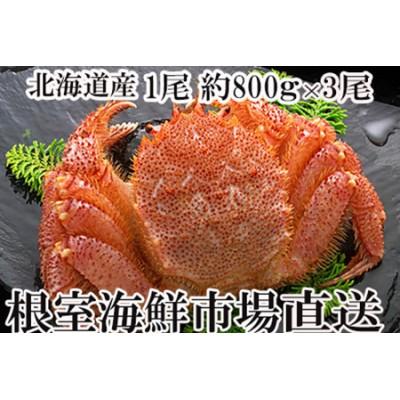 <12月6日決済分まで年内配送> ボイル毛がに700~900g×3尾 D-14004